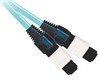 Fiber Optic Cable, OM2, MTP, 12 Fiber, 10 Gig Aqua, 50/125, Multimode, 10 Meter