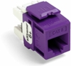 Quickport Extreme 6+ Cat 6 Jack, Purple 25 Pack